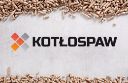 kotospaw-piece-i-koty-owicim-grafpelet-lava-olimp-ekopelet-bielsko-biaa-owicim-pelet-grafpellet-pelet-owicim-serwis-kotw-na-pelet-nowoczesne-piece-i-koty-co-owicim-bielsko-biaa